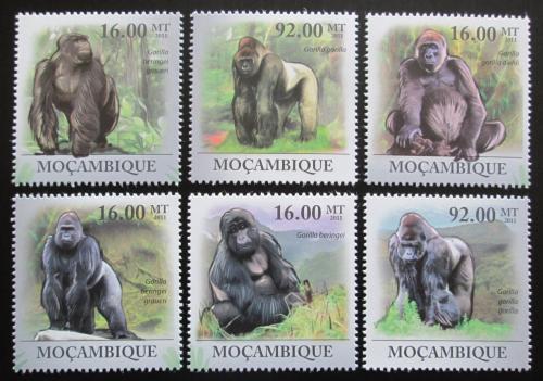 Poštovní známky Mosambik 2011 Gorila východní nížinná Mi# 4451-56 Kat 14€