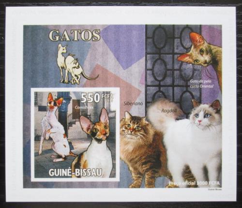 Poštovní známka Guinea-Bissau 2010 Koèky DELUXE, na kartonu Mi# 4774 Block