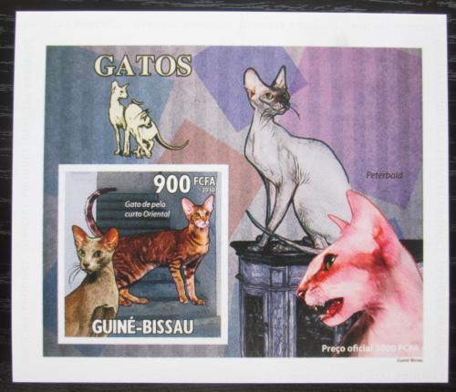 Poštovní známka Guinea-Bissau 2010 Koèky DELUXE, na kartonu Mi# 4777 Block