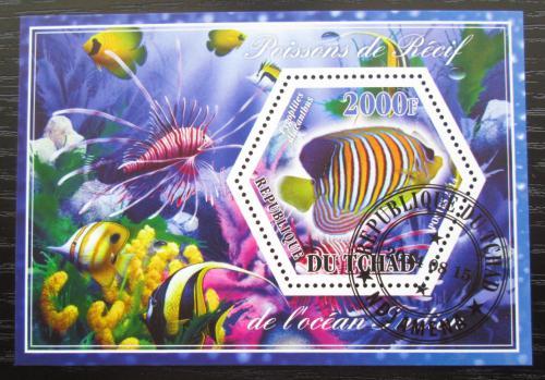 Poštovní známka Èad 2014 Ryby Mi# N/N