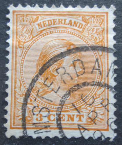 Poštovní známka Nizozemí 1892 Královna Wilhelmina Mi# 34 a
