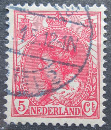 Poštovní známka Nizozemí 1899 Královna Wilhelmina Mi# 54 A