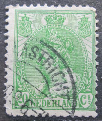 Poštovní známka Nizozemí 1899 Královna Wilhelmina Mi# 59 A