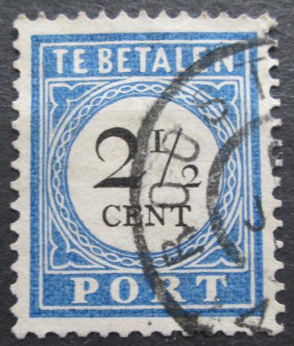 Poštovní známka Nizozemí 1894 Doplatní Mi# 16 I