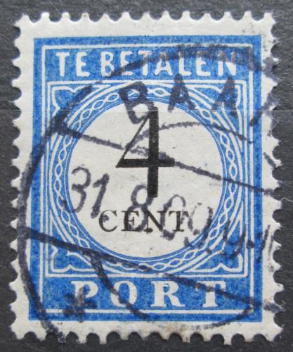 Poštovní známka Nizozemí 1909 Doplatní Mi# 18 I