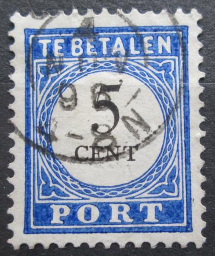 Poštovní známka Nizozemí 1894 Doplatní Mi# 19 I