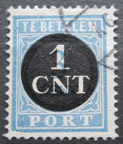 Poštovní známka Nizozemí 1923 Doplatní Mi# 61
