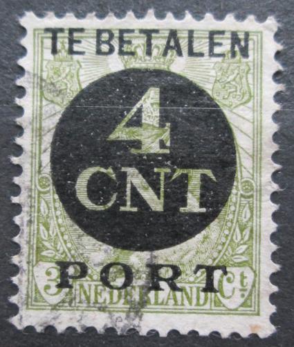 Poštovní známka Nizozemí 1924 Doplatní Mi# 65