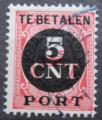 Poštovní známka Nizozemí 1924 Doplatní Mi# 66