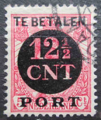 Poštovní známka Nizozemí 1924 Doplatní Mi# 68