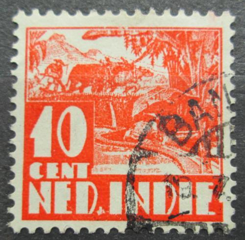 Poštovní známka Nizozemská Indie 1934 Farmáø na rýžovém poli Mi# 212