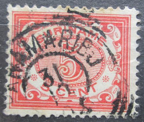 Poštovní známka Surinam 1902 Nominální hodnota Mi# 52