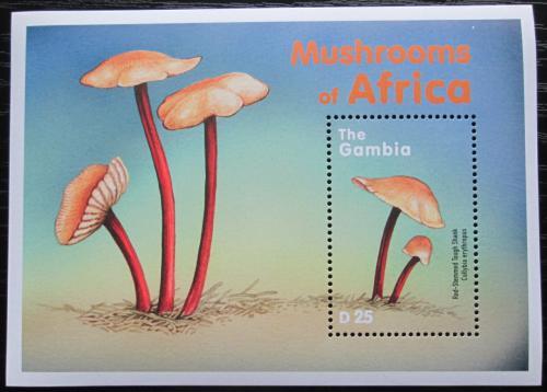 Poštovní známka Gambie 2000 Houby Mi# Block 464