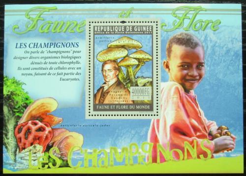 Poštovní známka Guinea 2011 Houby Mi# Block 1935 Kat 16€