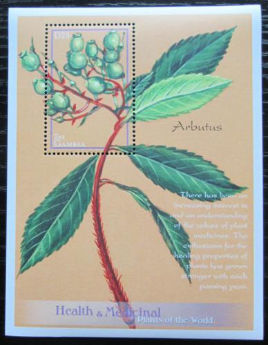 Poštovní známka Gambie 2001 Planika obecná - léèivá rostlina Mi# Block 541