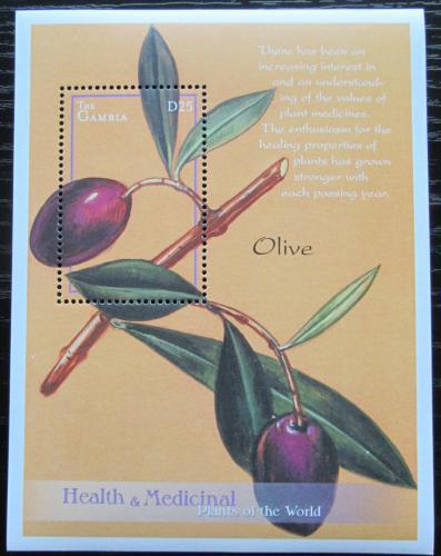Poštovní známka Gambie 2001 Olivovník evropský - léèivá rostlina Mi# Block 542