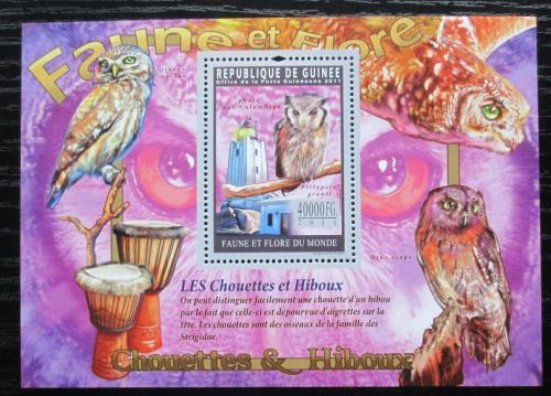 Poštovní známka Guinea 2011 Sovy Mi# Block 1943 Kat 16€
