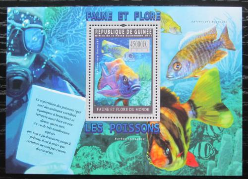 Poštovní známka Guinea 2011 Ryby Mi# Block 1940 Kat 18€