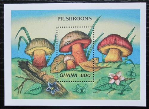 Poštovní známka Ghana 1989 Houby Mi# Block 145