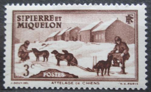 Poštovní známka St. Pierre a Miquleon 1938 Psí spøežení Mi# 171