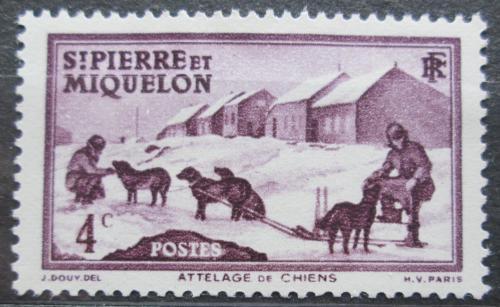 Poštovní známka St. Pierre a Miquleon 1938 Psí spøežení Mi# 172