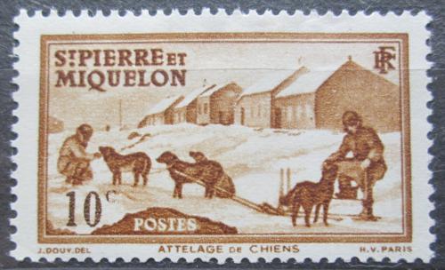 Poštovní známka St. Pierre a Miquleon 1938 Psí spøežení Mi# 174
