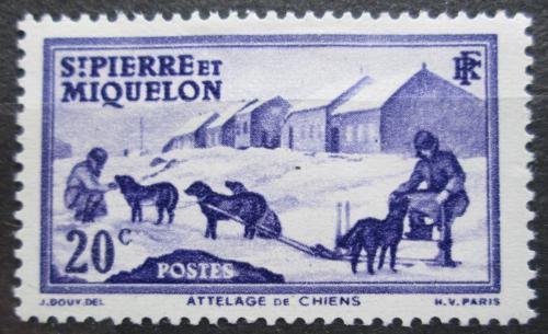 Poštovní známka St. Pierre a Miquleon 1938 Psí spøežení Mi# 176