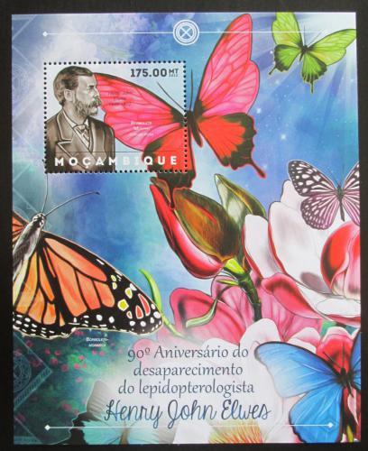 Poštovní známka Mosambik 2012 Motýli, Henry John Elwes Mi# Block 685 Kat 10€
