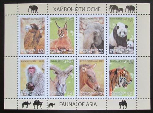 Poštovní známky Tádžikistán 2009 Asijská fauna Mi# 531-38 Kat 15€