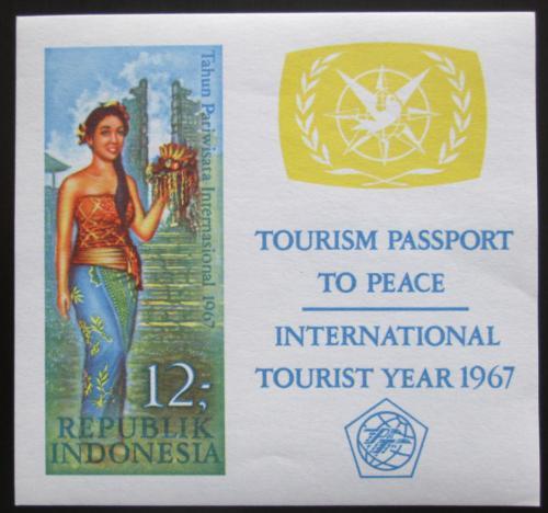 Poštovní známka Indonésie 1967 Mezinárodní rok turistiky Mi# Block 7