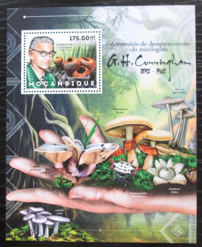 Poštovní známka Mosambik 2012 Houby, G. H. Cunningham Mi# Block 690 Kat 10€