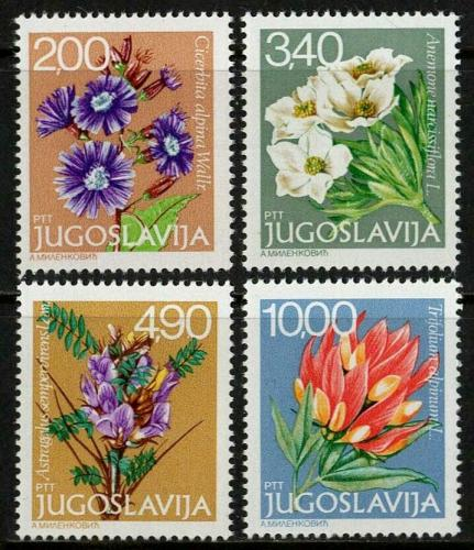 Poštovní známky Jugoslávie 1979 Vysokohorské kvìtiny Mi# 1789-92