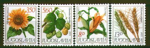 Poštovní známky Jugoslávie 1981 Polní rostliny Mi# 1887-90