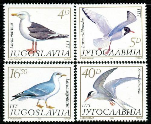 Poštovní známky Jugoslávie 1984 Racci Mi# 2055-58 Kat 6€