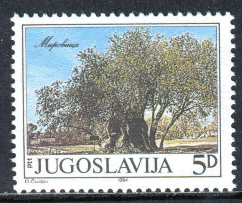 Poštovní známka Jugoslávie 1984 Starý olivovník, Mirovica Mi# 2065