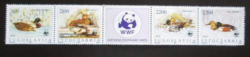 Poštovní známky Jugoslávie 1989 Kachny, WWF Mi# 2328-31 Kat 11€