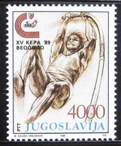 Poštovní známka Jugoslávie 1989 ME v atletice, skok o tyèi Mi# 2344