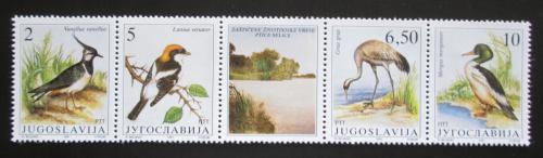 Poštovní známky Jugoslávie 1991 Chránìní ptáci Mi# 2463-66 Kat 10€