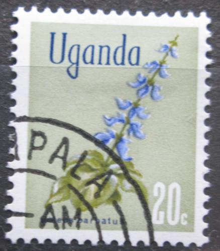 Poštovní známka Uganda 1969 Africká kopøiva Mi# 108