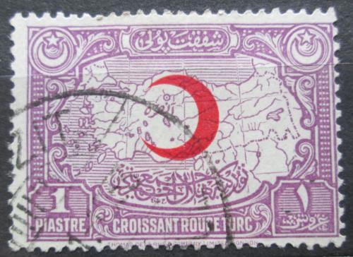 Poštovní známka Turecko 1928 Mapa, daòová Mi# 9