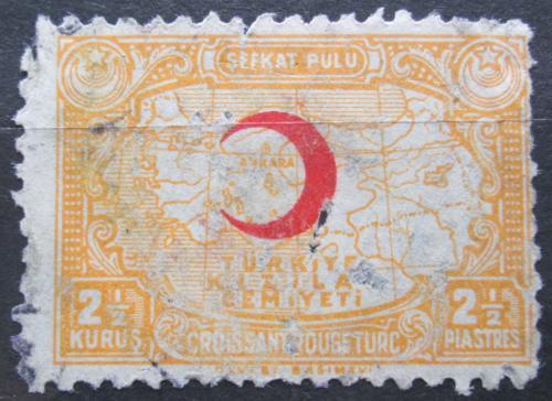 Poštovní známka Turecko 1928 Mapa, daòová Mi# 10