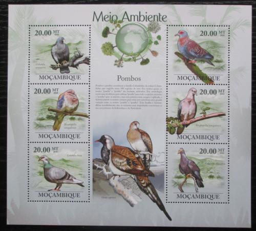 Poštovní známky Mosambik 2010 Holubi Mi# 3483-88