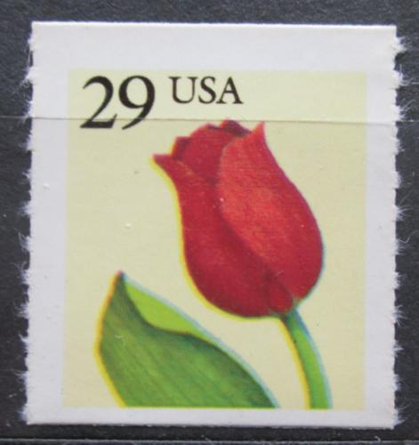 Poštovní známka USA 1991 Tulipán Mi# 2125 L