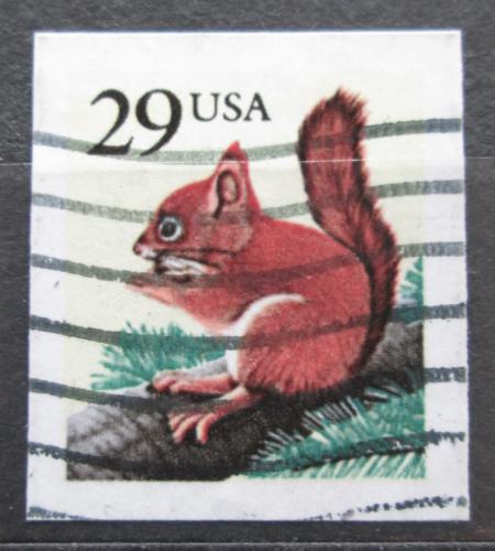 Poštovní známka USA 1993 Veverka obecná Mi# 2385