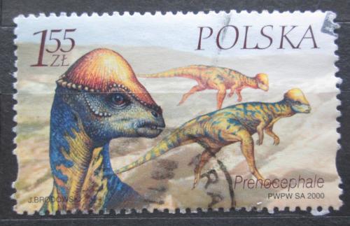 Poštovní známka Polsko 2000 Prenocephalus Mi# 3815