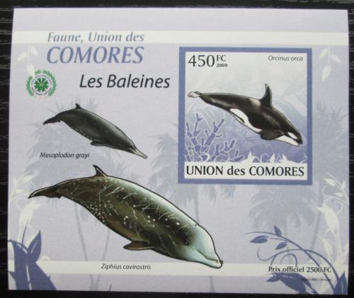 Poštovní známka Komory 2009 Velryby DELUXE neperf. Mi# 2452 B Block