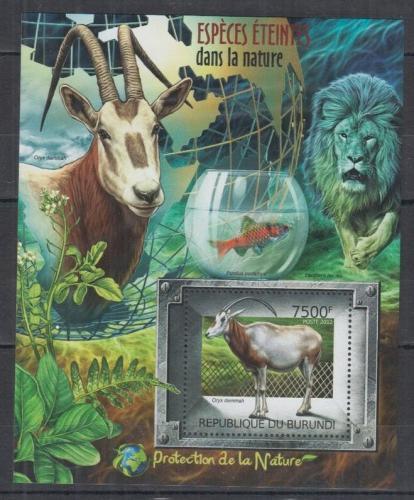 Poštovní známka Burundi 2012 Ohrožené druhy Mi# Block 241 Kat 9€