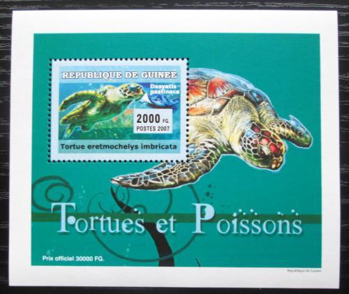 Poštovní známka Guinea 2007 Ryby a želvy DELUXE Mi# 4674 Block