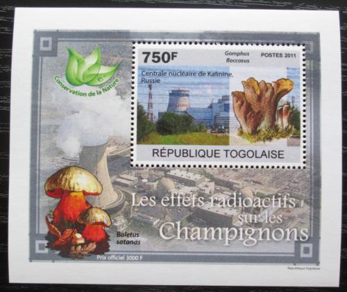 Poštovní známka Togo 2011 Radioaktivní houby DELUXE Mi# 3801 Block