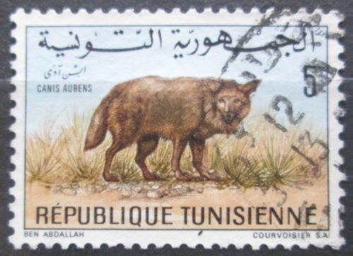 Poštovní známka Tunisko 1968 Šakal obecný Mi# 707